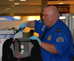 Photo from the TSA website